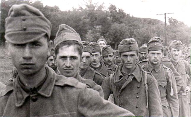 A 2. magyar hadsereg a keleti fronton.  IV. rész. A naplók